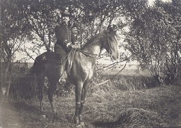 MILITAIRE MEDAILLE  A CHEVAL  PHOTO SEPIA - Guerre, Militaire