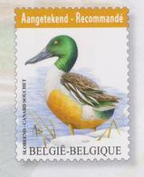 BE 2015 - N° 4537 XX BUZIN  Canard Souchet - Belgique