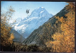 New Zealand 1981 / Mt. Cook From The Hermitage, Canterbury - New Zealand