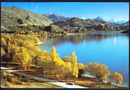 New Zealand 1989 / Glendhu Bay / Autumn At Lake Wanaka, Otago - New Zealand
