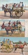 PALERMO-CARRO SICILIANO-3 CARTOLINE-2 SONO VIAGGIATE-ANNO  1900-1925 - Palermo