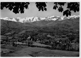 SALUTI  DA    VICOFORTE  (MONDOVI')   CN                  (VIAGGIATA) - Italia