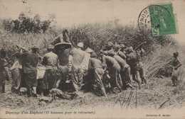 ASIE ASIA INDOCHINE CAMBODGE COLONIES FRANCAISES DEPECAGE D'UN ELEPHANT Chasse édit G BARBAT - Cambodia