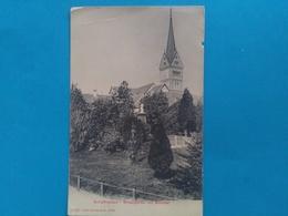Schaffhausen, Mosergarten Mit Münster, Ca. Um 1900 - SH Schaffhouse