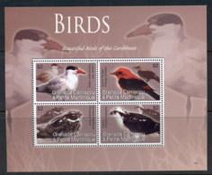 Grenada Carriacou & Petite Martinique 2007 Beautiful Birds Of The Caribbean MS MUH - Grenada (1974-...)