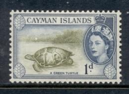 Cayman Is 1953-59 QEII Pictorial 1d Green Turtle MLH - Iles Caïmans