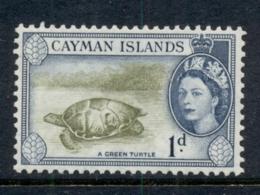 Cayman Is 1953-59 QEII Pictorial 1d Green Turtle MUH - Iles Caïmans