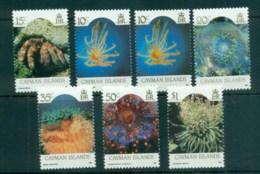 Cayman Is 1986 Marine Life Inscribed 1990 MUH Lot72620 - Cayman Islands