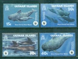 Cayman Is 2003 WWF Short Finned Pilot Whale MUH Lot76165 - Cayman Islands