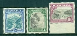 Jamaica 1952 Pictorials (6d Short Perfs) MLH - Jamaica (1962-...)