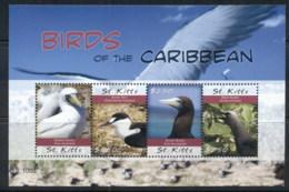 St Kitts 2010 Birds Of The Caribbean Sheetlet MUH - St.Kitts And Nevis ( 1983-...)