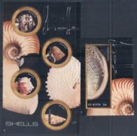 St Kitts 2012 Seashells 2xMS - St.Kitts And Nevis ( 1983-...)