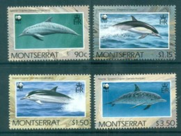 Montserrat 1990 WWF Dolphins MUH Lot76175 - Montserrat