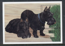 St Vincent 1998 Dogs MS MUH - St.Vincent (1979-...)