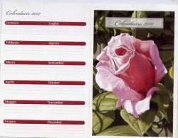 Calendarietto - 2007 Spam - Formato Piccolo : 2001-...