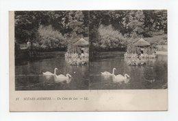 - CPA STEREOSCOPIQUES - SCENES ANIMEES - Un Coin Du Lac - Edions Lévy N° 17 - - Stereoscope Cards