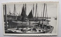 Bateau De Pêche Immatriculé Camaret Bretagne 29 Finistère ? Marin Pêcheur à Situer Photo Originale Cliché Amateur - Bateaux