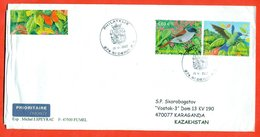 France 2003.Birds From The French Colonies. Stamp Reunioin. The Envelope Is Really Past Mail.Airmail. - France