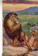 LION - Leones