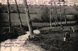 BEYNES -78- VUE DE LA MAULDRE A FLEUBERT - Beynes