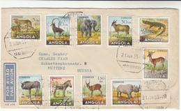 Angola / Airmail / Animals - Angola