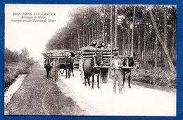 Landes -  Attelage De Mules - Unclassified