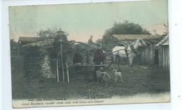 40 LA VIE LANDAISE  Résiniers Faisant Cuire Leur Pain (Vieux Four Landais)  Attelage Echassier ( Petit Métier ) - Autres Communes