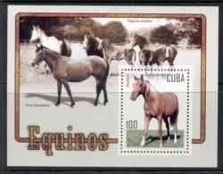 Caribbean Is 2005 Horses MS MUH - Cuba
