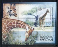 Caribbean Is 2007 Zoo, Giraffe MS MUH - Cuba