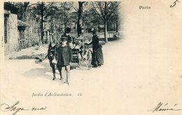 ANE(JARDIN D ACCLIMATATION) PARIS - Burros