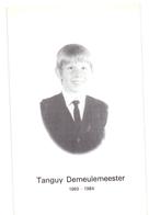 Devotie - Doodsprentje Overlijden - Tanguy Demeulemeester - Kortrijk 1969 - 1984 - Obituary Notices