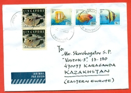 Singapore 2003.Fishs. The Envelope Is Really Past Mail.Airmail. - Pakistan