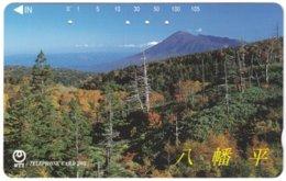 JAPAN H-973 Magnetic NTT [411-274] - Landscape, Wood - Used - Japan