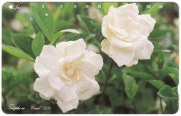 JAPAN H-977 Magnetic NTT [110-87016] - Plant, Flower - Used - Japan
