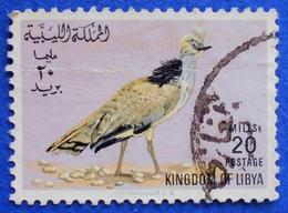 181 LIBYA 20 M 1965 FAUNA BIRD HOUBARA BUSTARD (Chlamydotis Undulata) - USED - Libya