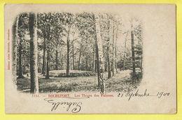 * Rochefort (Namur - La Wallonie) * (Editeur Jules Nahrath, Nr 1151) Les Thiers Des Falisses, Bois, Parc, 1900 - Rochefort