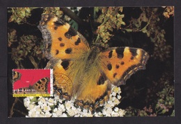 Netherlands: Maximum Card, 1993, 1 Stamp, Endangered Butterfly, Insect, Animal (traces Of Use) - Period 1980-... (Beatrix)