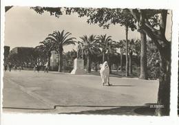 CPSM, Maroc ,N°95 101 75, Casablanca ,Parc Lyautey ,Monument Du Maréchal Leclerc, Ed. La Cigogne - Casablanca