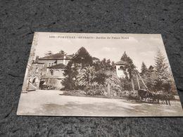 ANTIQUE POSTCARD PORTUGAL - BUSSACO - JARDIM DO PALACE HOTEL UNUSED - Aveiro