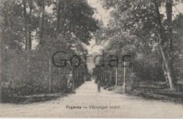 Romania - Fagaras - Parc - Romania