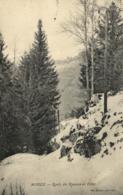 Jura - MOREZ - Route Des Rousses En Hiver - C 1514 - Morez