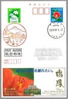 VOLCAN FUJIYAMA - VOLCANO. Fuji, Japon, 1991 - Volcanes
