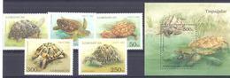 1995. Azerbaijan, Turtles, 5v + S/s, Mint/** - Azerbaïdjan