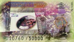 Ref. 326399 * NEW *  - INDONESIA . 2000. MINERALS. MINERALES - Indonésie