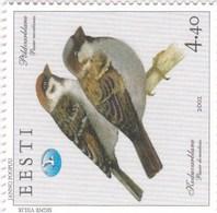 Estonie YV 415 MNH 2002 Moineau - Sparrows