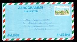 Madagascar -  Aerogramme Pour La France. - Madagascar (1960-...)