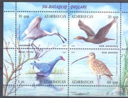 2009  Azerbaijan, Birds, Marsh Waterfowls, S/s, Mint/** - Azerbaïdjan