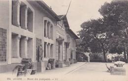 CARTOLINA - POSTCARD - ALGERIA - MUSE'E DES ANTIQUITE'S - Algeria