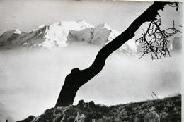 Les Alpes R. Bourdeau - France