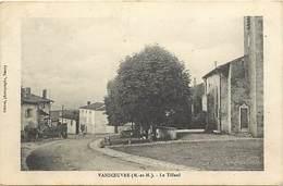 - Dpts Dv -ref-AE91- Meurthe Et Moselle - Vandoeuvre Les Nancy - Le Tilleul - Tilleuls - Arbre - Arbres - - Vandoeuvre Les Nancy